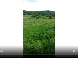 Pernambuco tem sua primeira área em análise técnica