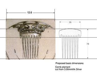 Comb.jpg