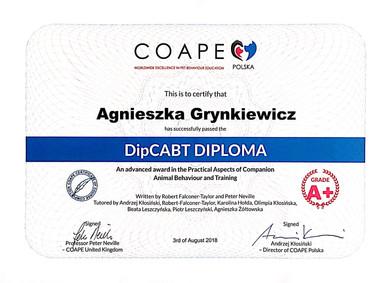 2018-08 COAPE DipCABT Diploma.jpg