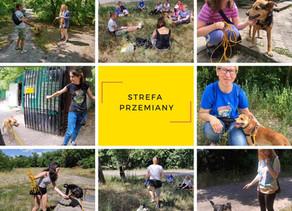 Strefa Przemiany - start projektu