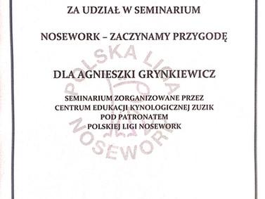 2018-08 Nosework.jpg