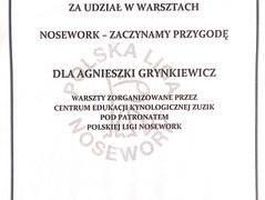 2018-09 Nosework.jpg