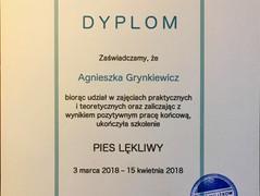 2018-04 Piotr Wojtkow Pies lekliwy.jpg