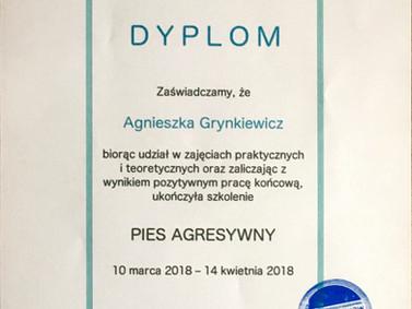 2018-03 Piotr Wojtkow Pies Agresywny.jpg