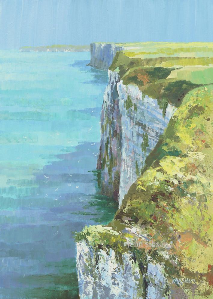 bempton cliffs muker