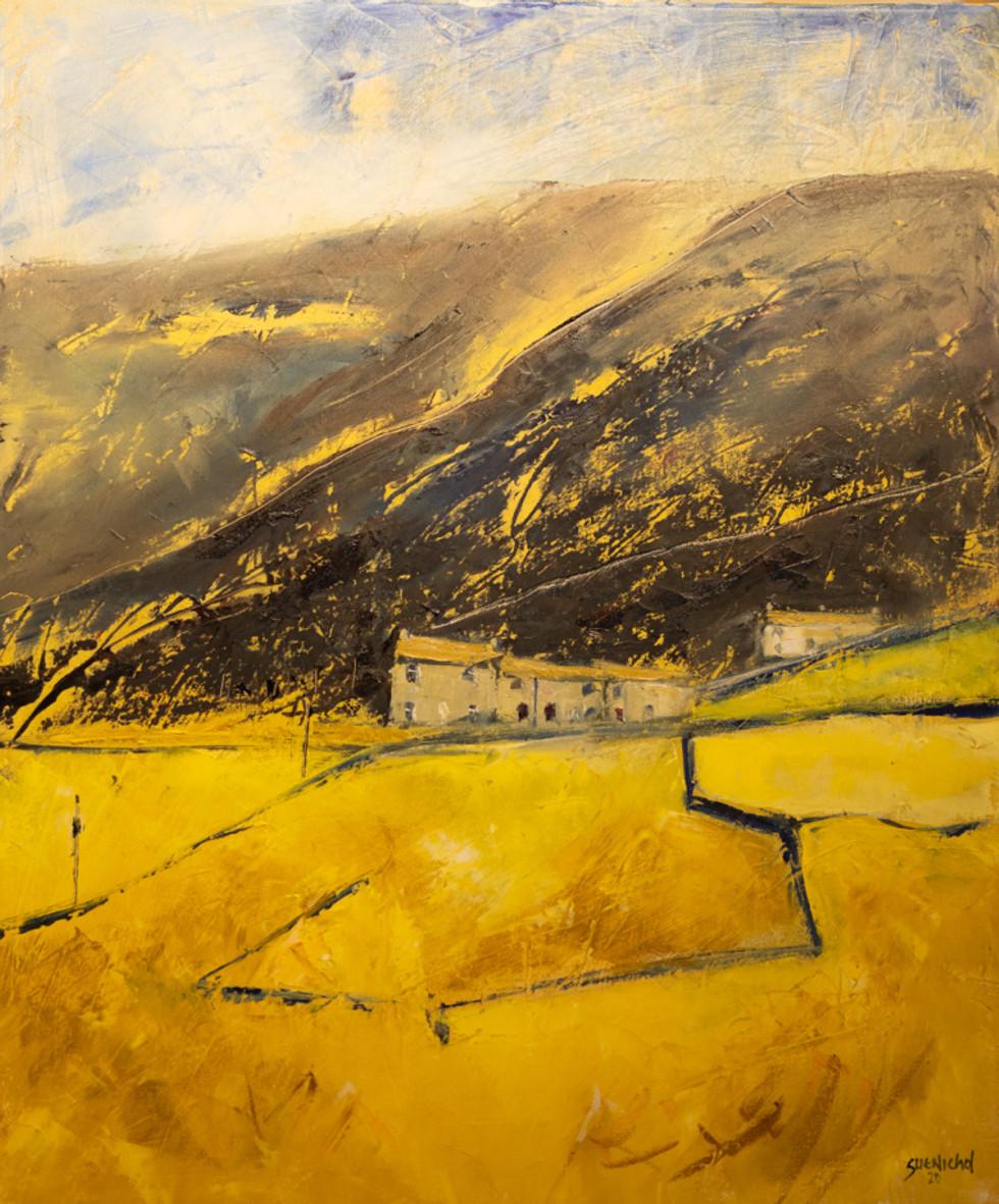 Castle Farm 2 | Sue Nichol