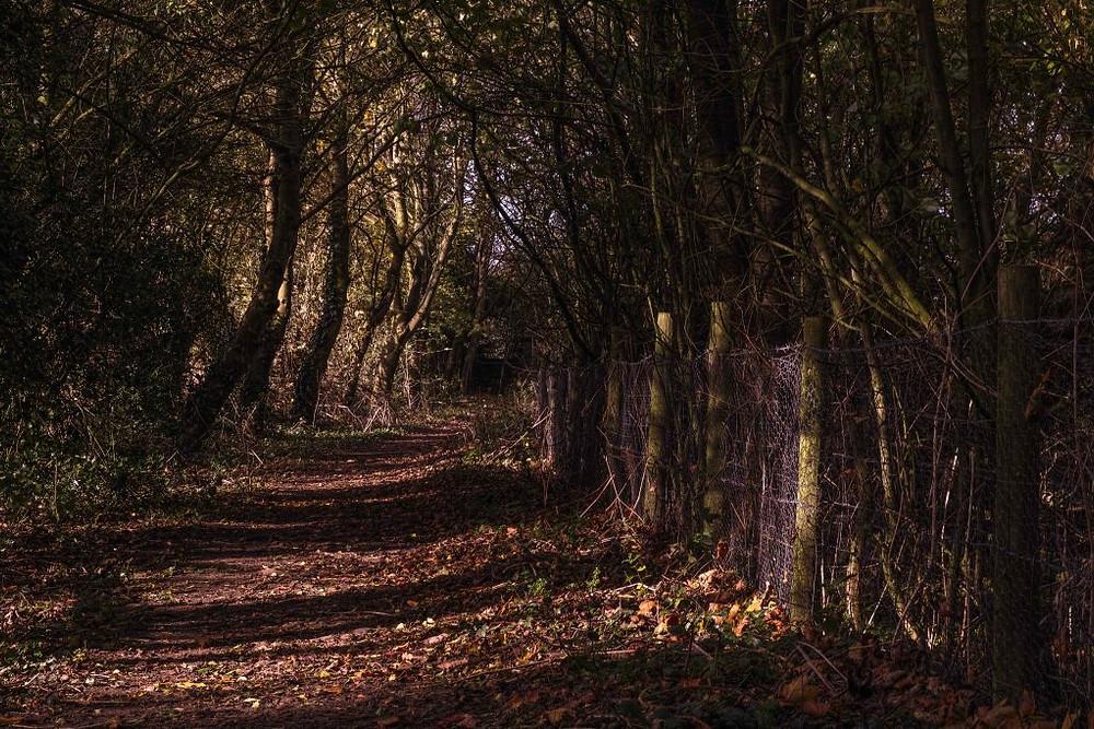 Sherriff Hutton, North Yorkshire   Sigma Merrill DP3   www.richardjwalls.com