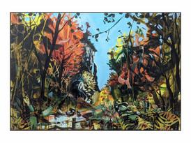 Kisdon Gorge, Blazing