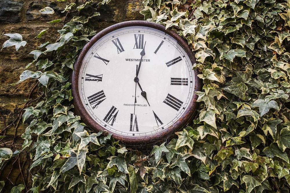 Clocks & Green | Sigma DP1 Quattro | www.richardjwalls.com