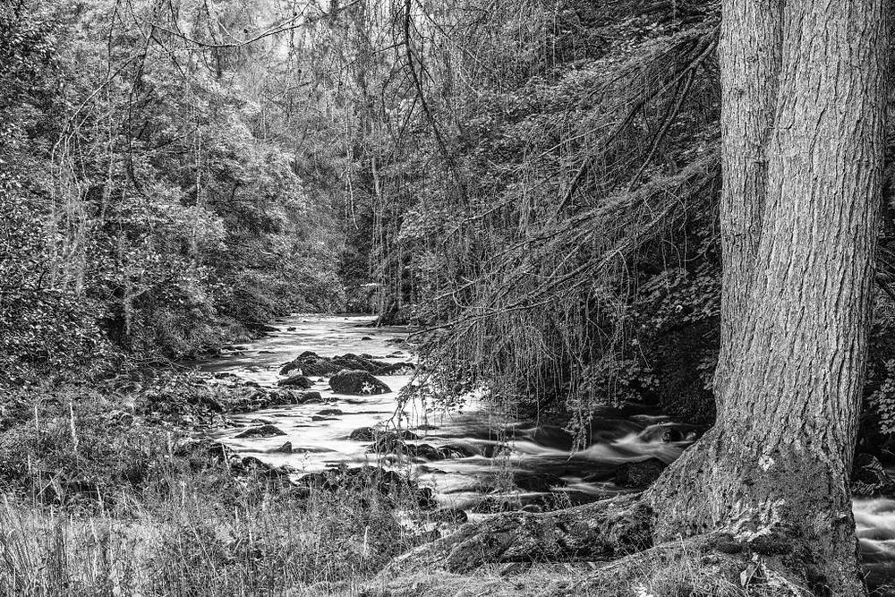 Elterwater, Langdale Valley | Sigma Merrill DP3 | www.richardjwalls.com