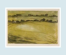 Croft & Three Fields