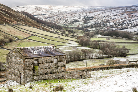 Classic Swaledale