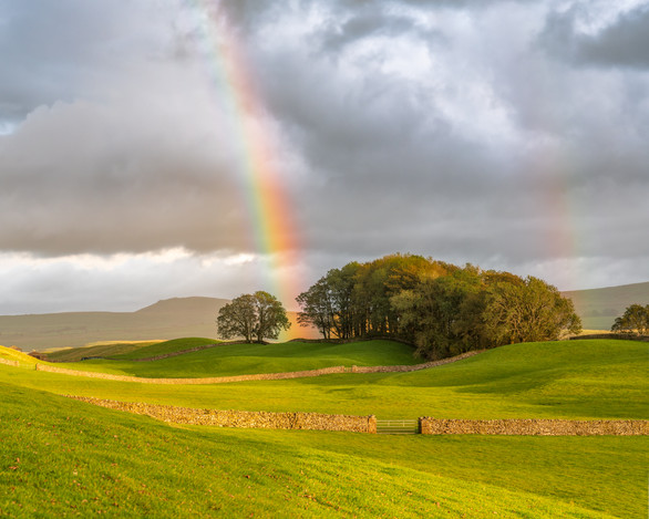 Pot of Gold, Wensleydale