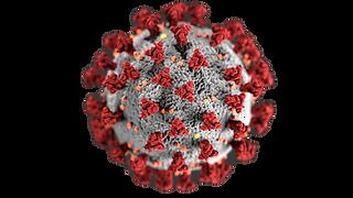 coronavirus-1_edited.png