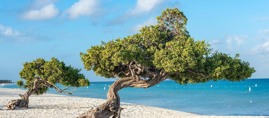 I ❤️ Aruba