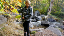 My CBD Journey | Christine Collier