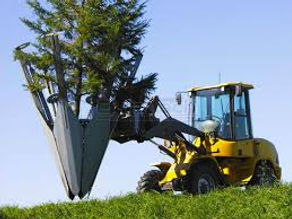 Tree spade image.jpg