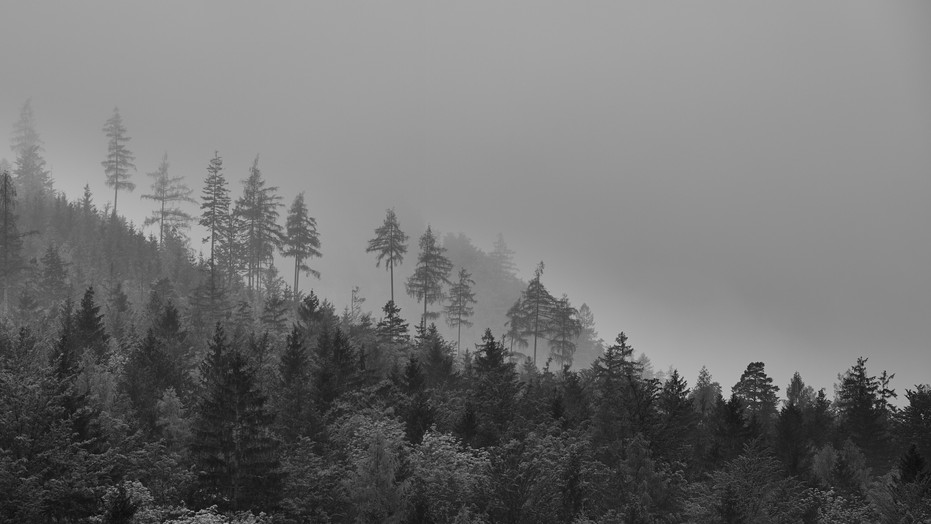Gesäuse / Steiermark SW 8