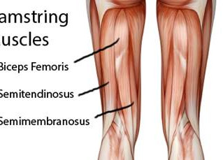 Take Care Of Your Hamstrings