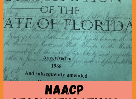 Florida's 2020 Constitutional Amendments & You