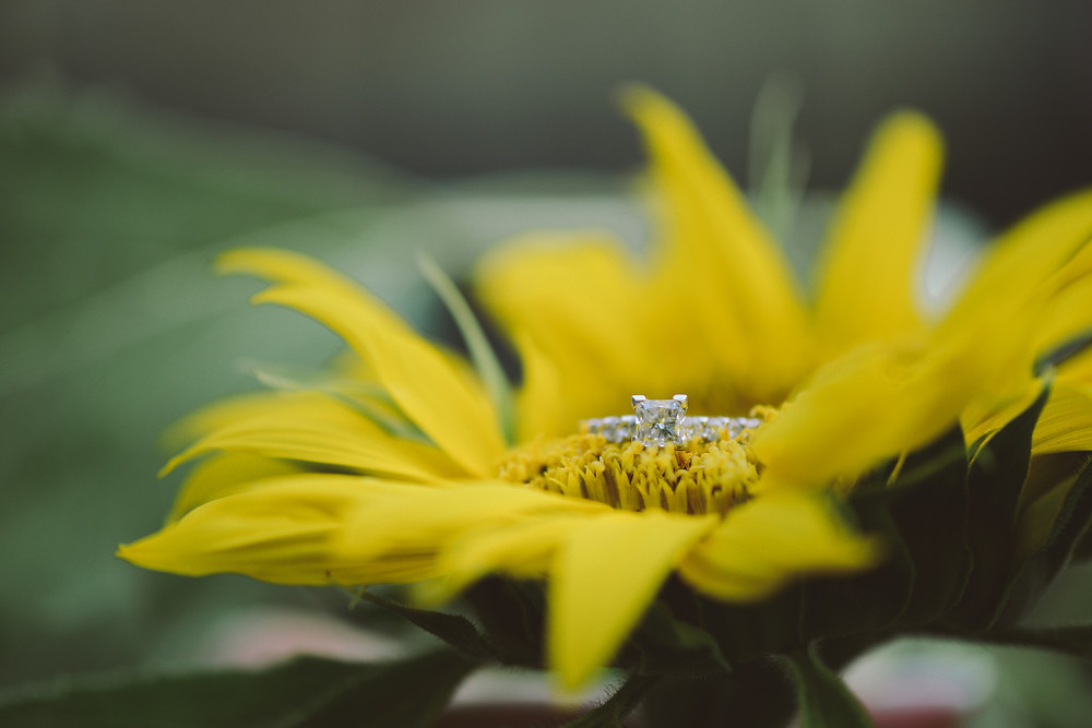 Isn't her ring gorgeous??!!