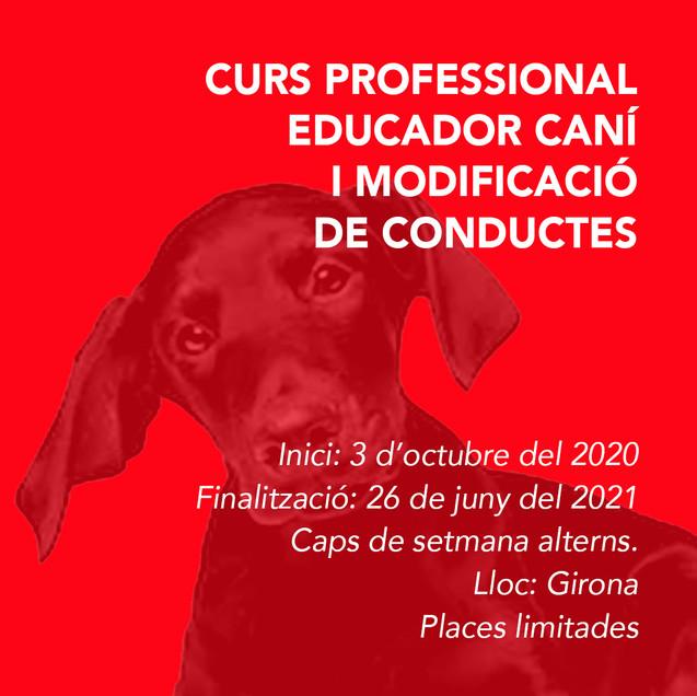 EDUCACIÓ_CANINA_I_MC.jpg