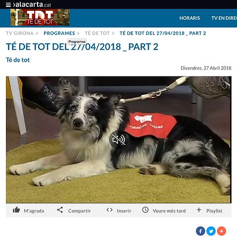 Te de Tot de TVGirona
