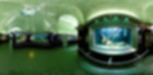 BELLE ISLE AQUARIUM INTERIOR FISH EYE SHOT_edited_edited.jpg