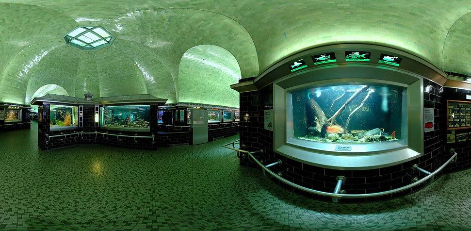 BELLE ISLE AQUARIUM INTERIOR FISH EYE SH