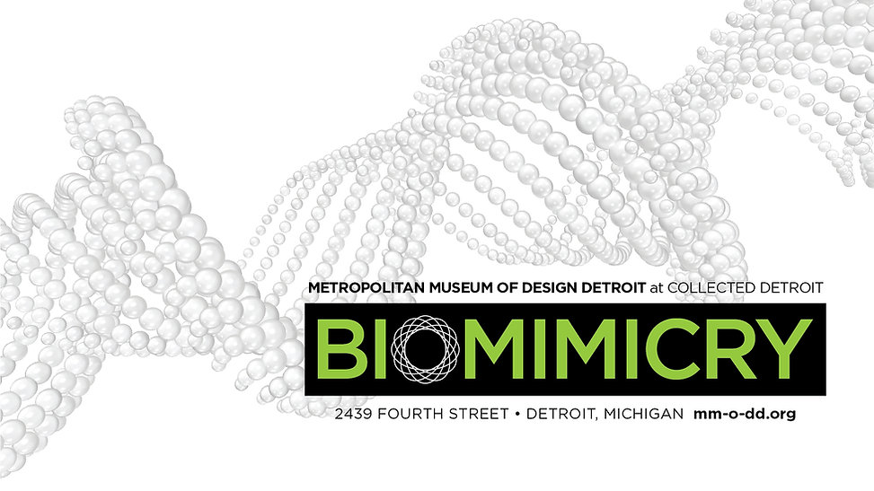 WEBSITE 1920x1080_BioMimicry.jpg