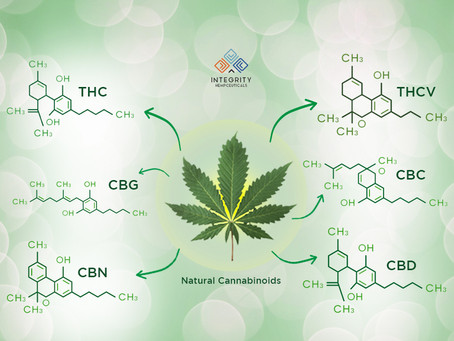 Do you know the CBG and CBN potential benefits?