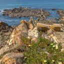 littoral alentejan