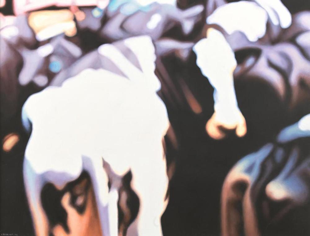 Blurry cow Ivan Durrant