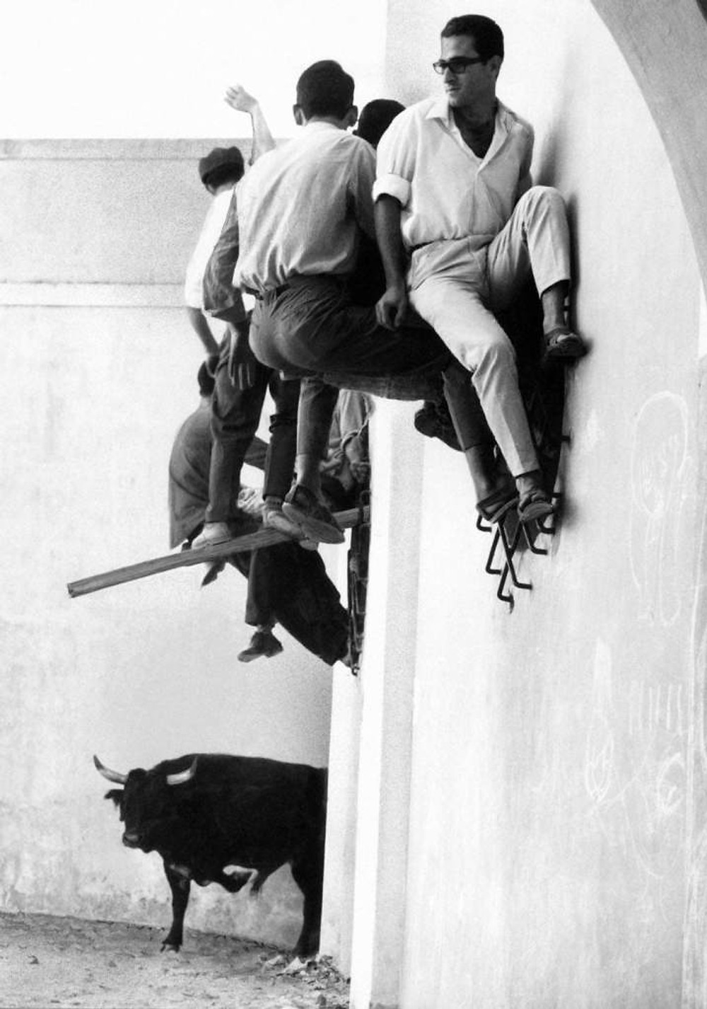people hiding from a bull