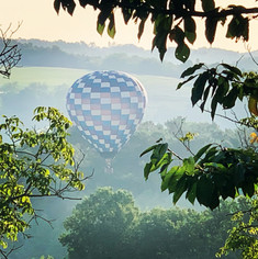 Balloons fly over in the morning