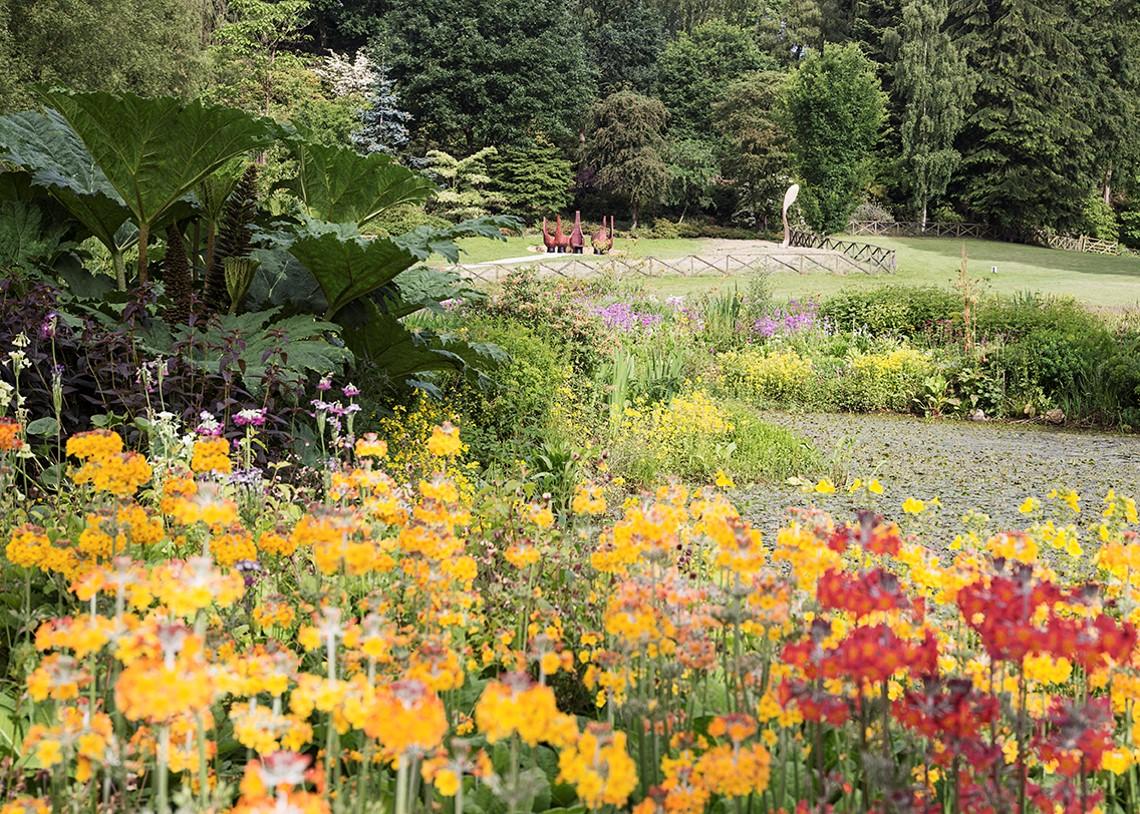 Himalayan Garden 2