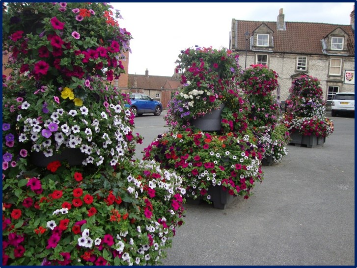 malton in Bloom