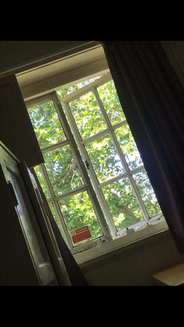 Dewer room window