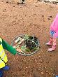 Little Bears Forest Preschool  - Milton Locks seashore - getting creative - Hants & IoW Wildlife Trust