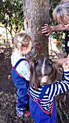 Clay faces on trees - Little Bears Forest Preschool