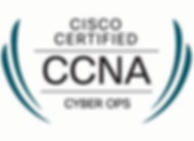 ccna-cyberops-training.png