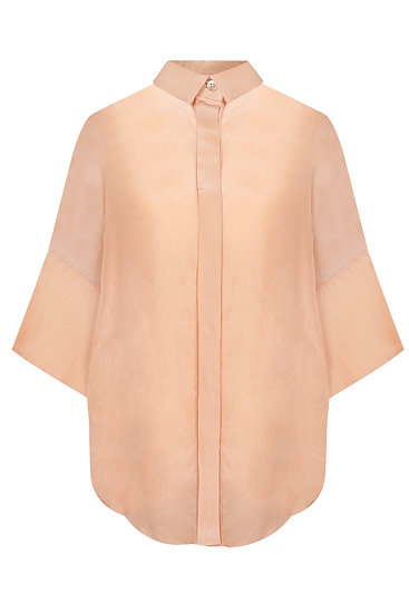Silk blouse nihilism