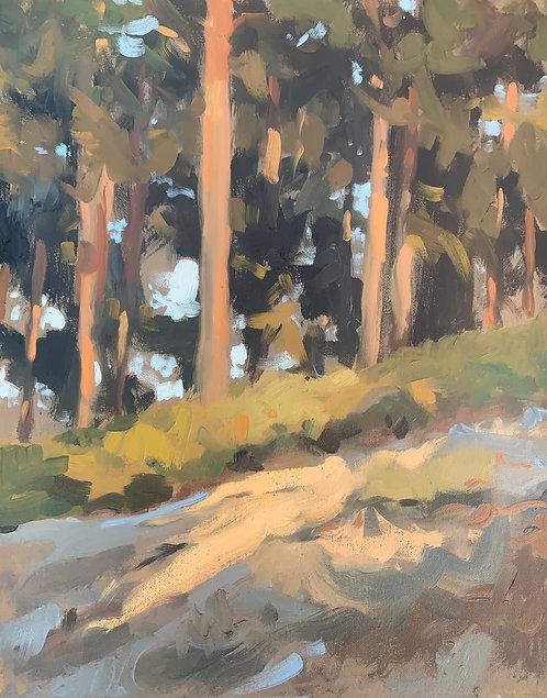 "Pine Walks, Frensham, 9,5x12"""