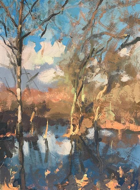 "Winter reflections, Wimbledon Common 6x8"""