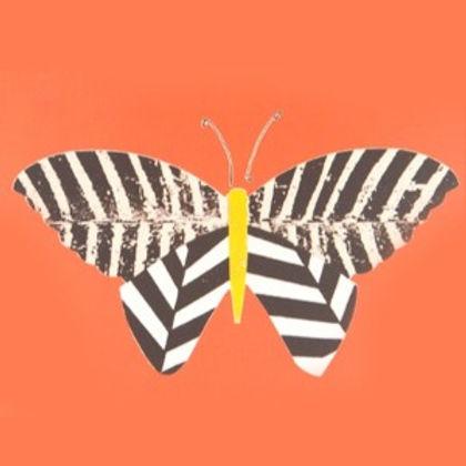 Zebra%2520Butterfly_edited_edited.jpg