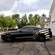 Mustang GT S550 Relective Splash Graphic