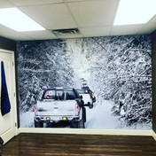 Off-road Wall Mural