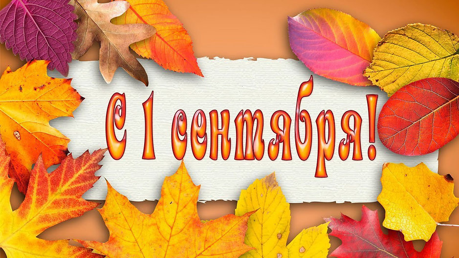 2019Holidays___September_1_Yellow_leaves