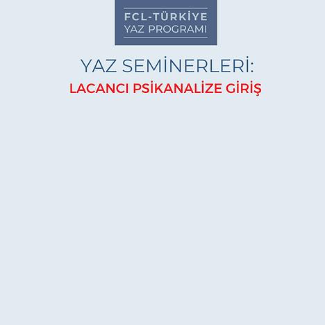 YAZ SEMİNERLERİ LACANCI PSİKANALİZE GİRİŞ (7).png