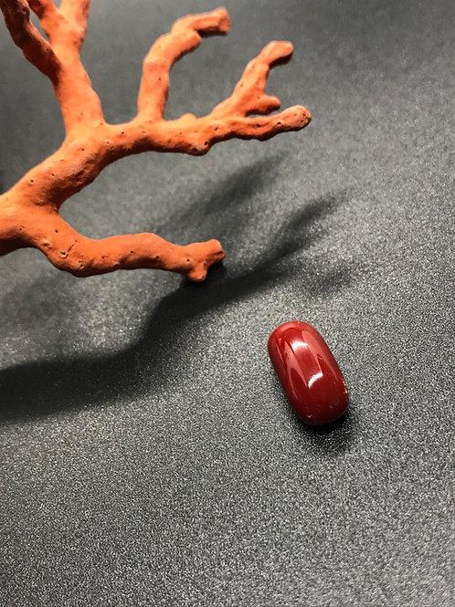 Cabochon Corail Rouge véritable